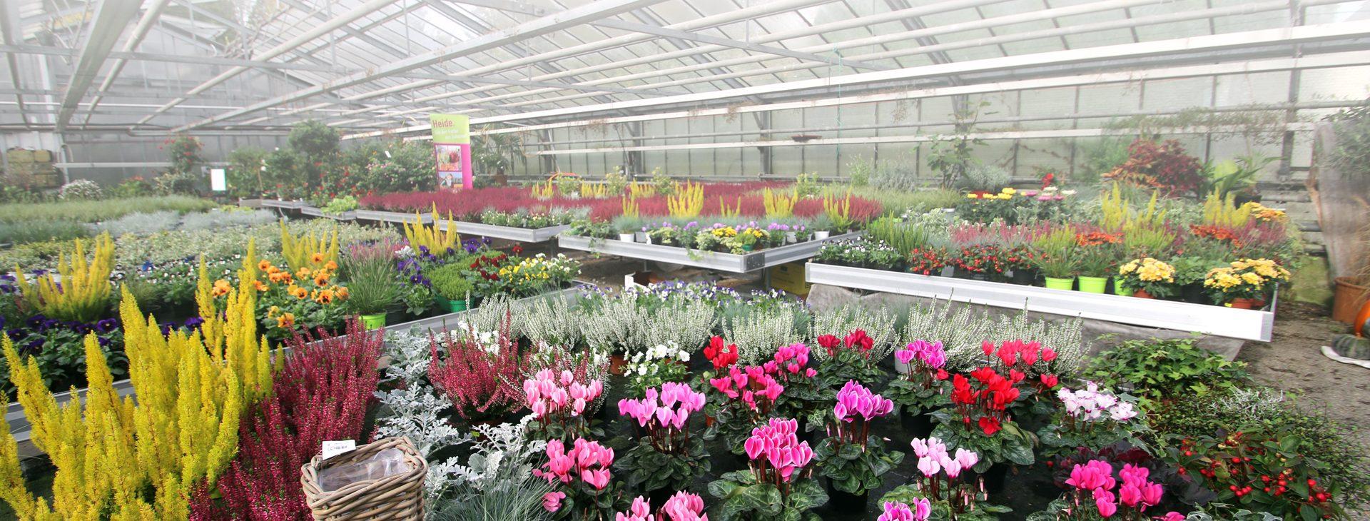 Willkommen in der Gärtnerei Blumen-Emmerich!