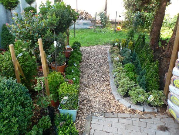 Grab bepflanzt mit Sträuchern